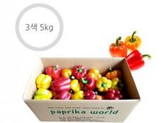 3색 파프리카 - 5kg ( 21~26개 내외 ) 특품