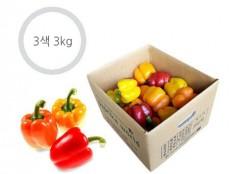3색 파프리카 - 3kg ( 12~17개 내외 ) 특품