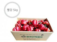 빨강 파프리카 - 5kg ( 25~28개 내외 ) 특품