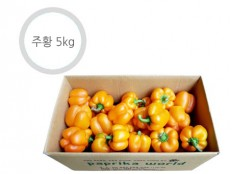 주황 파프리카 - 5kg ( 21~26개 내외 ) 특품