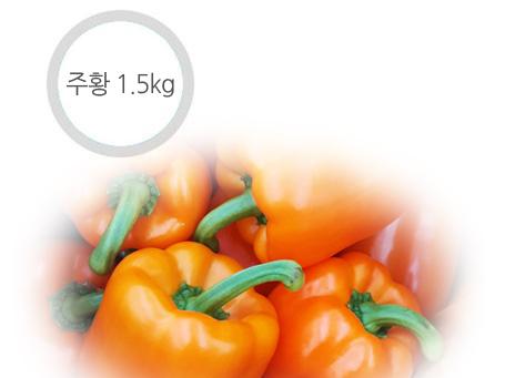 주황 파프리카 - 1.5kg ( 6~9개 )